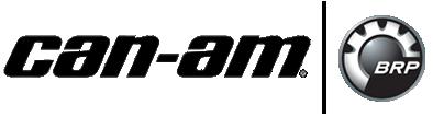 assitencia-tecnica-autorizada-mercury-canam-porto-alegreii-fw